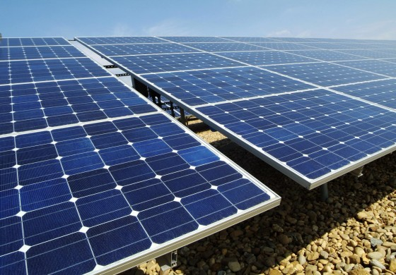 Government committed to renewable energy development