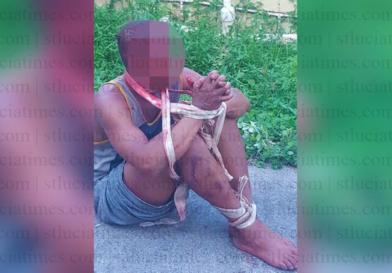 Alleged serial rapist tied up and beaten
