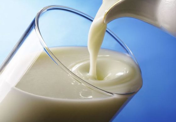 Celebration of the World Milk Day