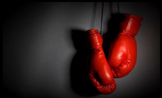 Boxing Association appoints new executive.
