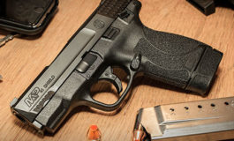 Minister wants 'draconian' laws against illegal guns