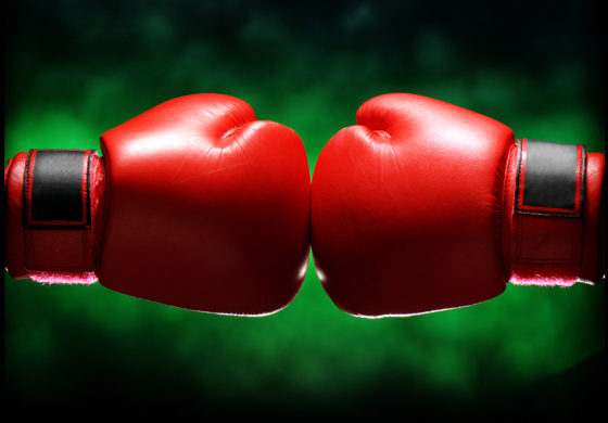Boxing gym project gets more support