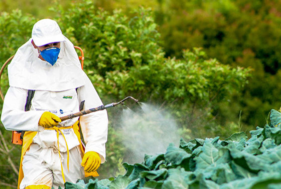 Antigua: Board implements new policy for pesticide imports