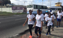 Celestial Self Development Centre Hosts Successful Vital Voices Global Mentoring Walk 2017