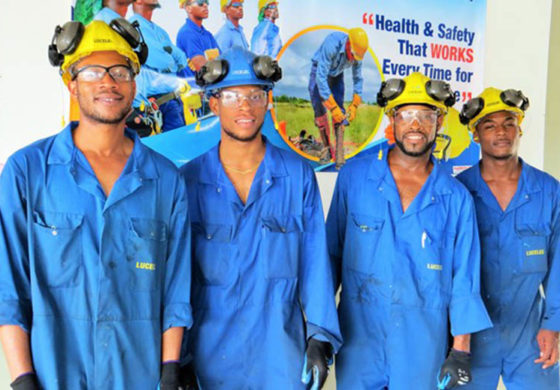 LUCELEC launches 21st annual health and safety observance