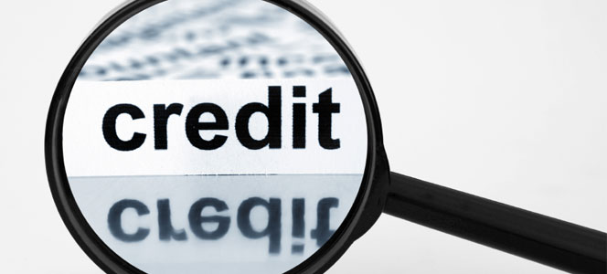 cab backs harmonised credit reporting st lucia times news