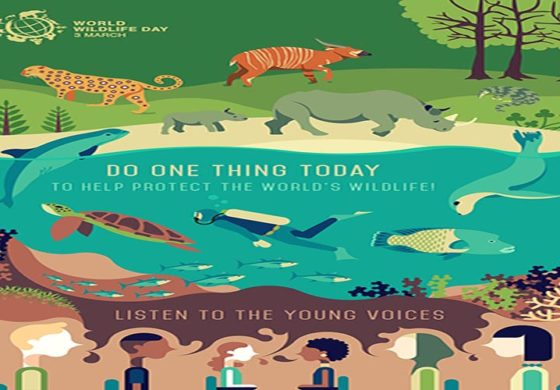 March 3 is World Wildlife Day