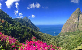 Ladera Resort Challenges St. Lucia Businesses