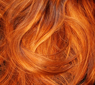Exhibition opens to tackle abuse towards France's redheads