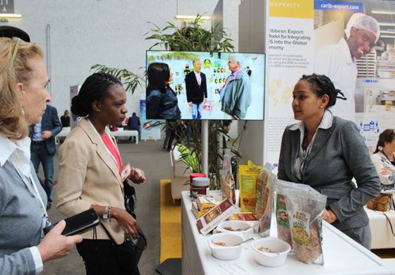 Caribbean Export – Part of the Best of Investing in Development