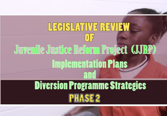 Review of Family Law Bills, Implementation Plan for Effecting the Child Justice Legislation and Development Strategy