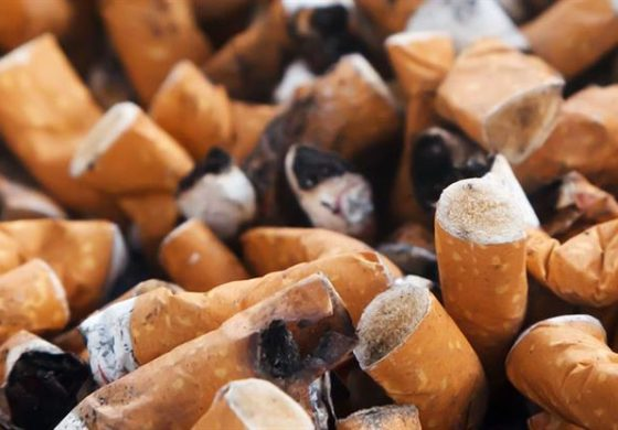 WHO advises against tobacco use
