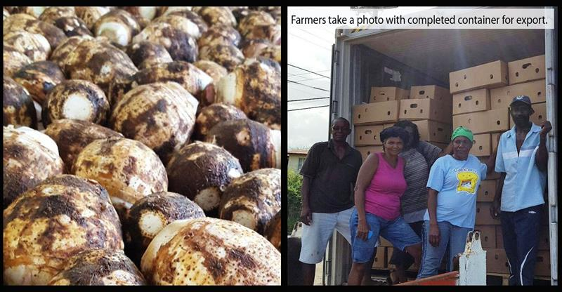 oecs-agri-export-with-text