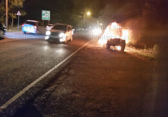 Motorist escapes as vehicle bursts into flames