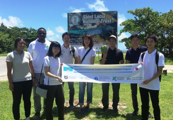 Japanese Research Edible Seaweed in Saint Lucia