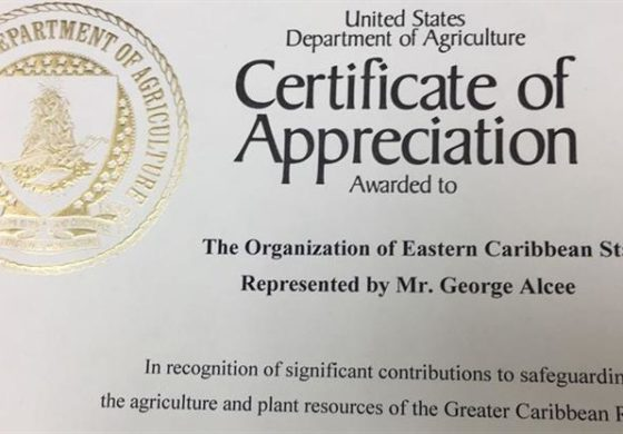 OECS receives agriculture award