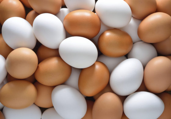 Contaminated eggs found in UK and France