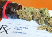 Medical practitioners being certified to prescribe medical marijuana