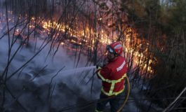 3,000 firefighters in Portugal combat raging wildfires