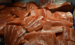 Sale of genetically modified salmon in Canada alarms environmentalists