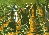 Quality training for agriculturists