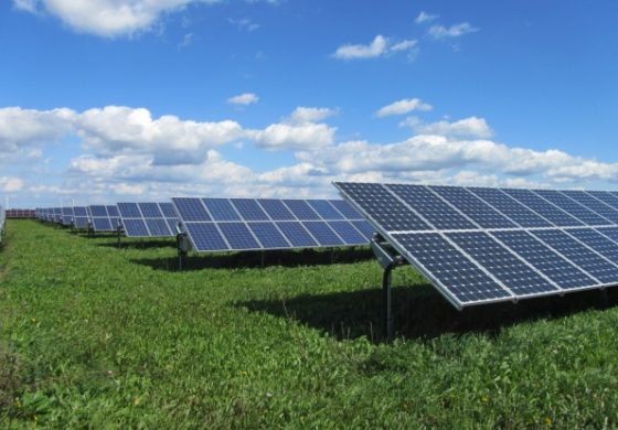 Project launched for solar farm in south of saint lucia for Solar ranch