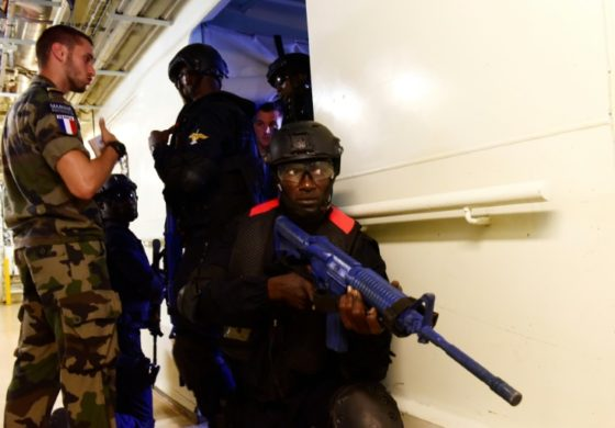 West Africa steps up battle against pirates and poachers