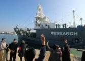 Japan kills 177 whales in Pacific campaign: government