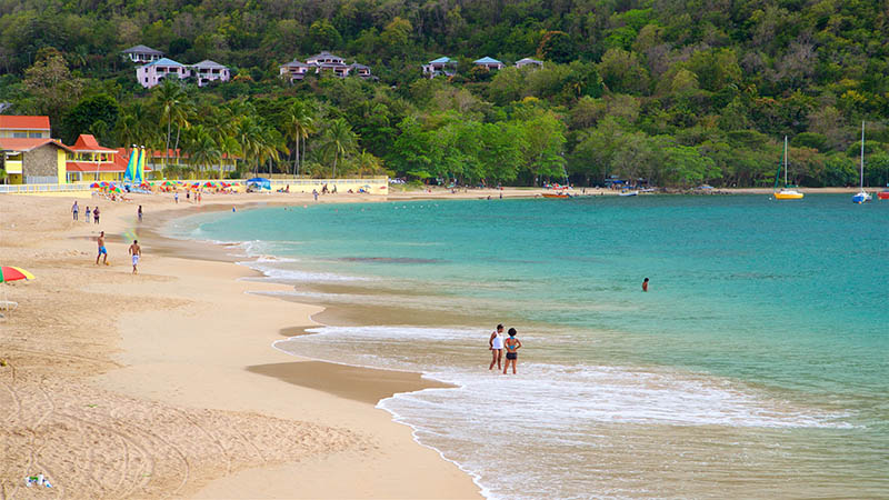 Saint Lucia Growing From Strength to Strength in 2017