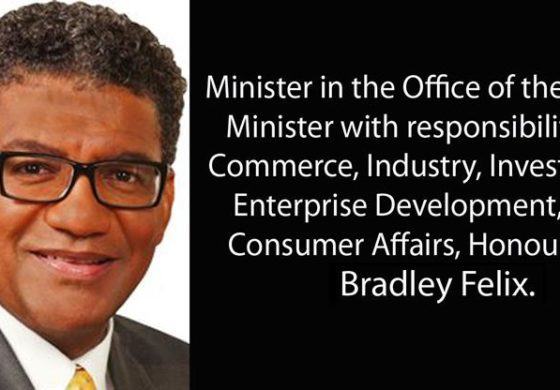 Bradley Felix speaks on World Standards Day