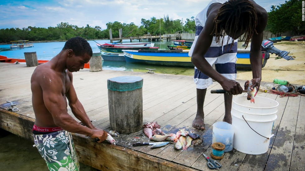 fishermen cleaning fish