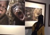 Chinese museum pulls down 'racist' exhibits