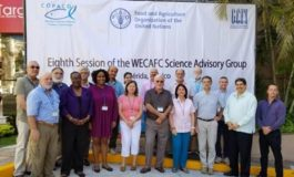 Caribbean fisheries scientists review status of main fish stocks in the region