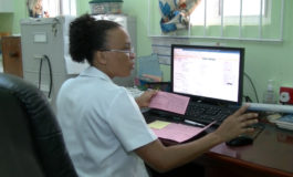 PAHO Supports electronic perinatal system for health sector