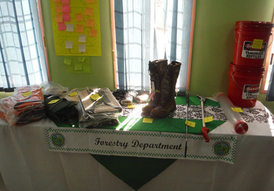 Personal Protective Equipment for Forestry Personnel