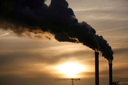 World carbon emissions on the rise again: study