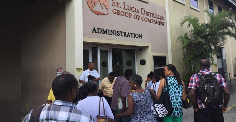 st-lucia-distillers-local-company-business-field-trip