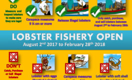 Lobster Fishery will Close