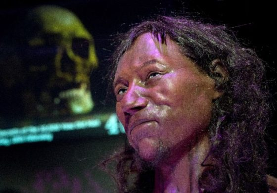 DNA shows first modern Briton had dark skin, blue eyes
