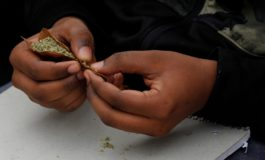 Jamaica 'ready for growth of cannabis industry'