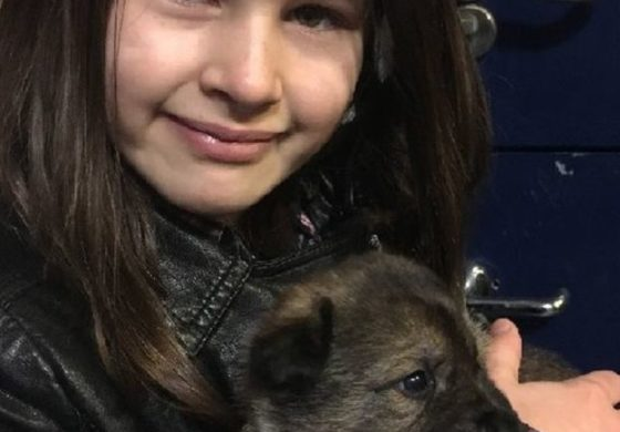 Burglar chase girl, 11, chooses police puppy
