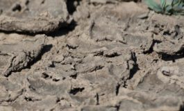 Drought concerns in parts of the Caribbean