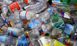 Scientists Accidentally Create A Plastic-Eating Enzyme