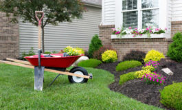 Create the perfect outdoor environment by using these landscaping tips