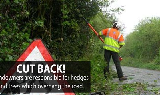 Property owners are liable for hedges and trees which overhang the road