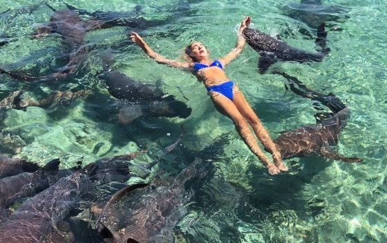Model bitten by shark while posing for photos