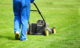 Call for Landscapers