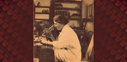 Lucy Wills was a pioneering female scientists who was instrumental in the discovery of folic acid.